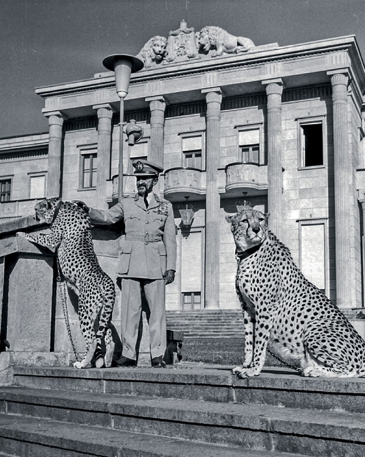 Ethiopia's last emperor, Haile Selassie I, stands with his pet cheetahs at the Jubilee Palace in ...