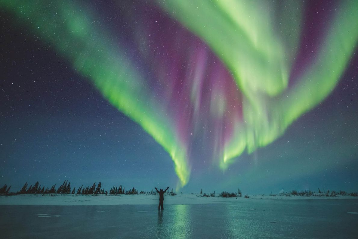 The Northern Lights is a natural phenomenon that is so stunning that people travel from all ...