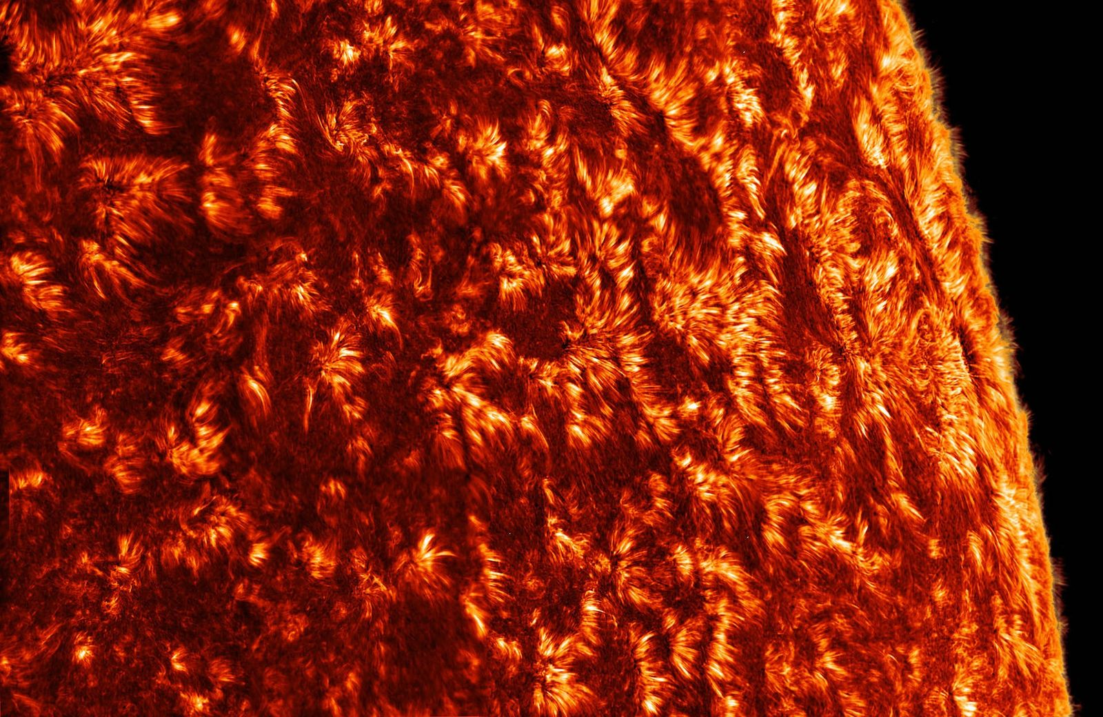 A view of the solar chromosphere, or the layer of the Sun's atmosphere. The grass-like features ...