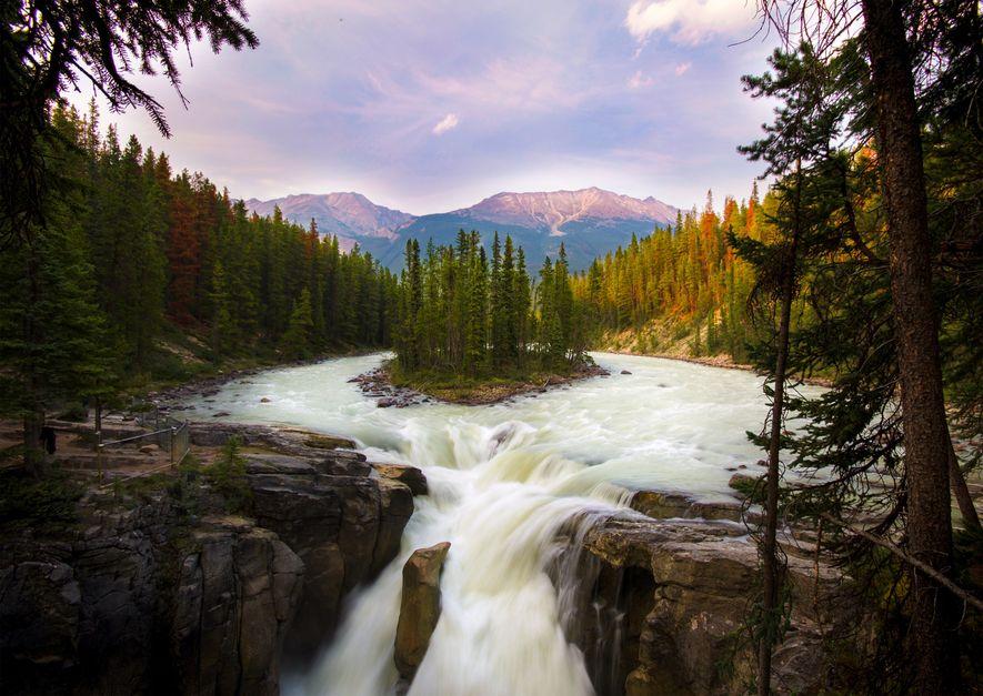 Sunwapta Falls, Jasper National Park.
