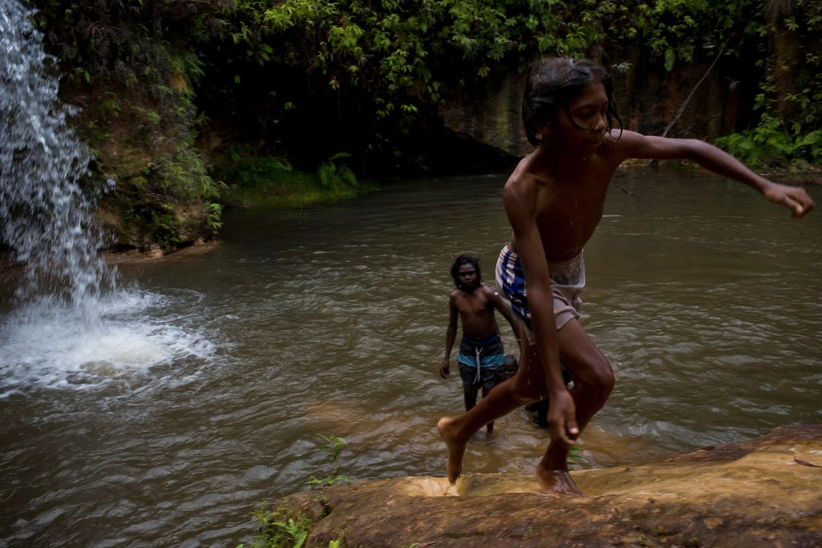 Tiwi boys swim in a freshwater stream, far enough inland to be deemed free of saltwater ...