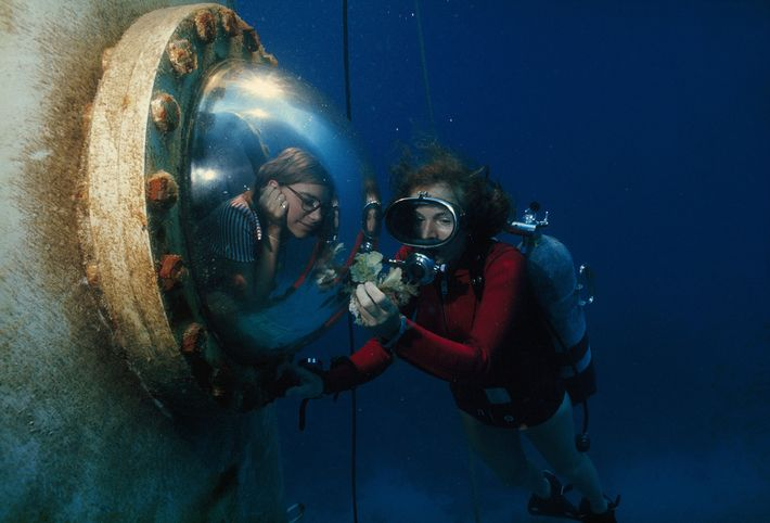 Earle shows an algae to a visitor under the waves.