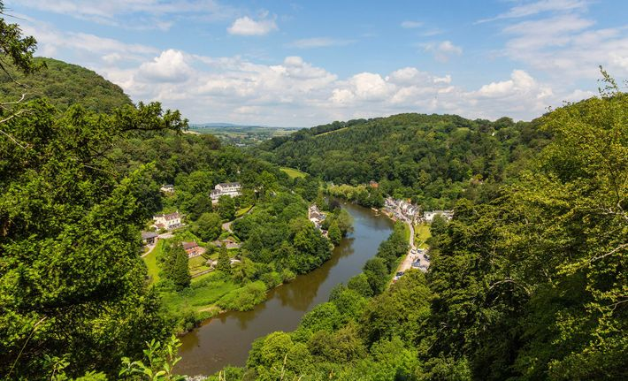 A view over Symonds Yat