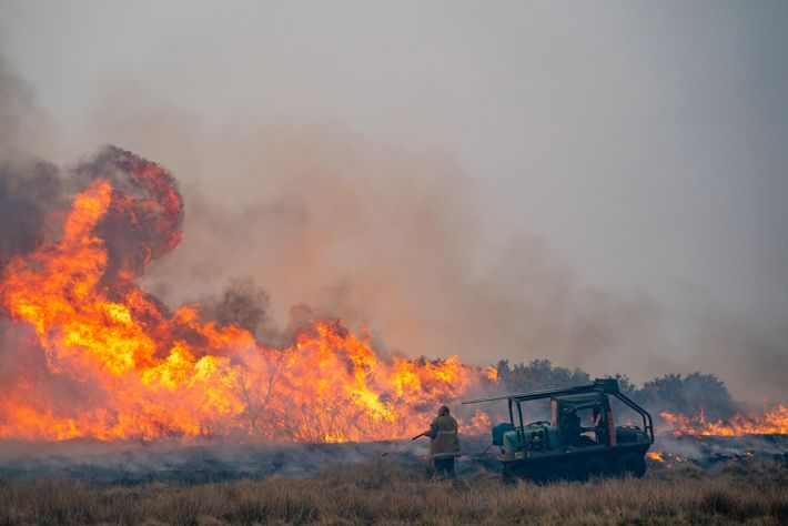 Wildfire rages near Dunphail, Moray, Scotland in April 2019.