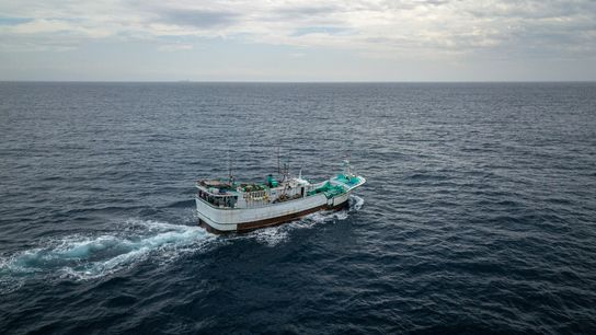 Taiwan's distant-water fishing fleet is one of the largest in the world, with more than a ...