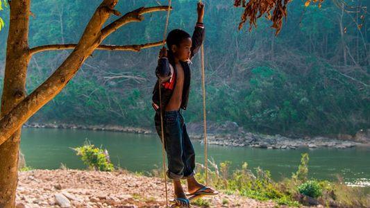 Taman Negara: The 130-million-year-old rainforest