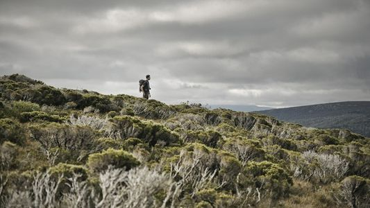 Tasmania: Windswept & wild