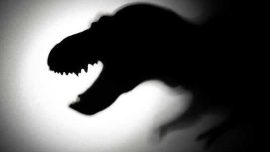 Few creatures have a silhouette so instantly recognisable as Tyrannosaurus rex – a remarkable feat given everything ...