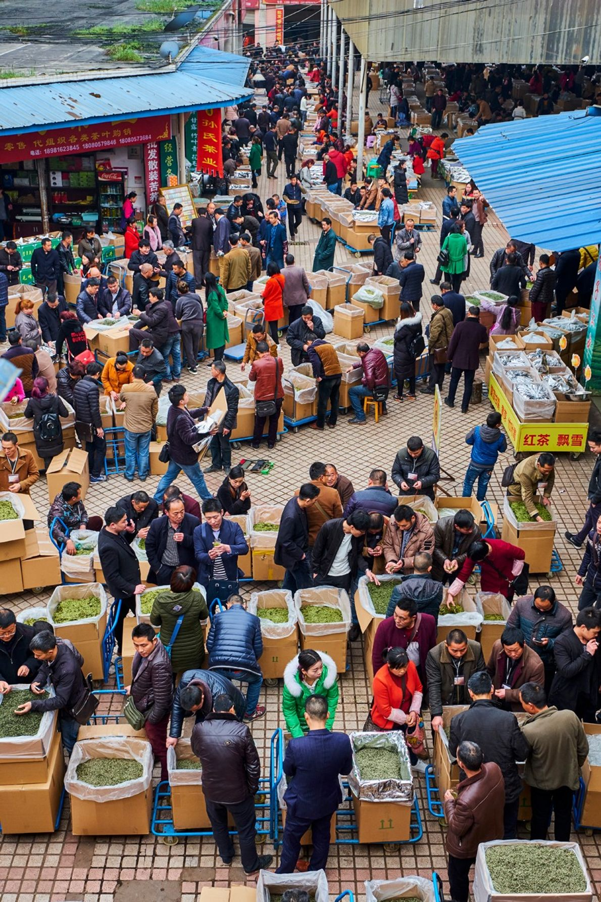 Buyers and sellers mingle at the wholesale green tea market in Mingshan, Sichuan.