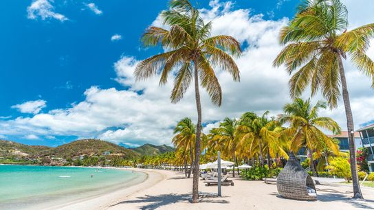 In early 2021, the palm-covered beach island of Antigua launched a programme to encourage 'workcations'.