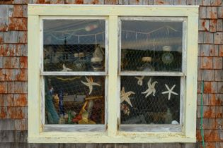 Sea stars and fishing nets hang in the window at The Buoy Shop in Peggy's Cove ...
