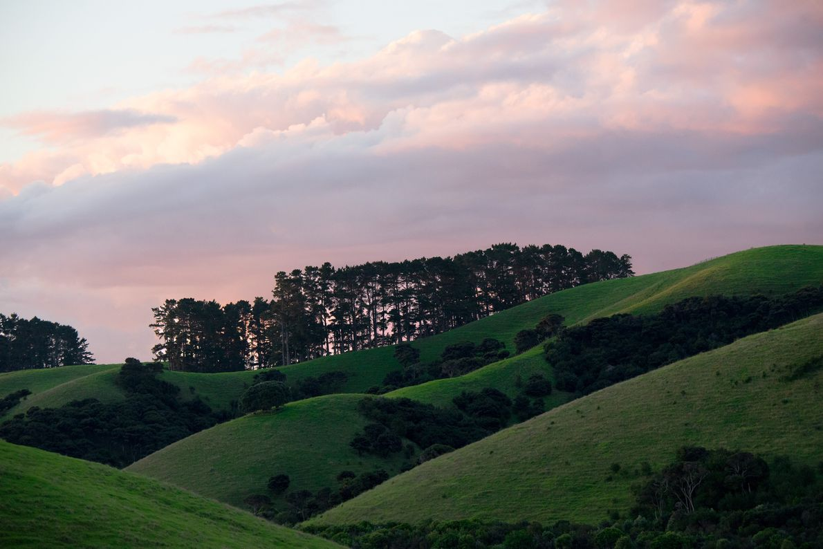 The sun sets behind the rolling hills of The Landing, a luxury development near Kerikeri. The …