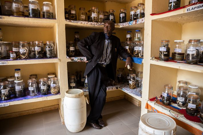 Herpetologist Baldé Mamadou Cellou stands amid the snake collection at Kindia's Institute for Applied Biological Research, ...