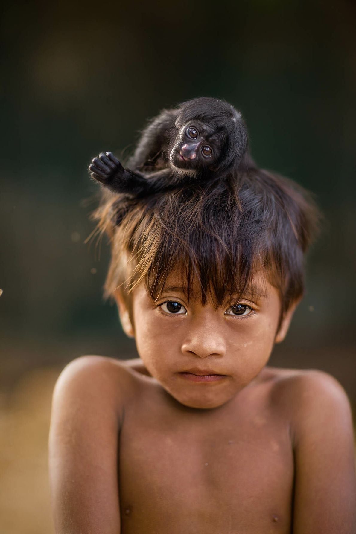 Five-year-old Kaiau carries a baby blackbearded saki monkey on his head. The Awá hunt monkeys for ...