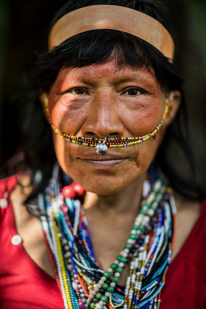 Loggers forced contact with Candida Campos Orbe and her family in the 1990s to clear the ...