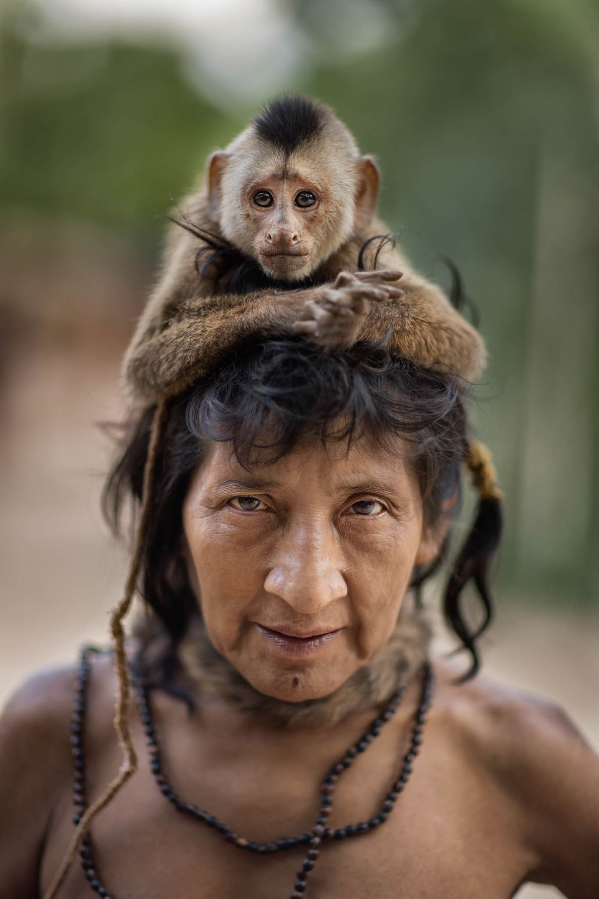 A Ka'apor capuchin crowns Ximirapi, 47, who left the settlement at Posto Awá in the 1990s ...