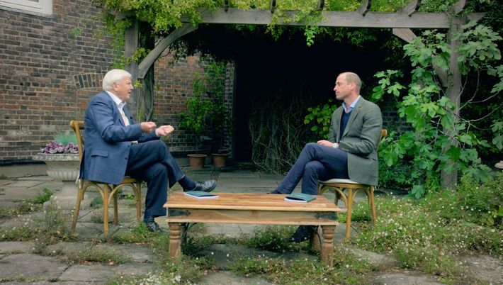 The Earthshot Prize: David Attenborough and Prince William in conversation