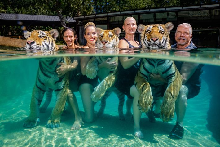 Antle poses with his tigers and staff (left to right), Kody Antle, Moksha Bybee, and China ...