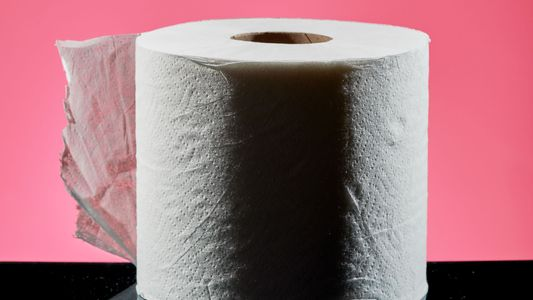 What did people do before toilet paper?