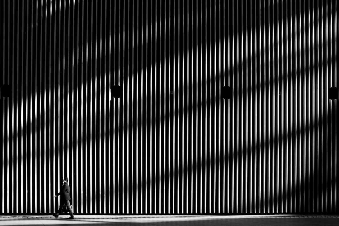A dynamic shadow that is projected on a regular wall. I like to take the interesting ...