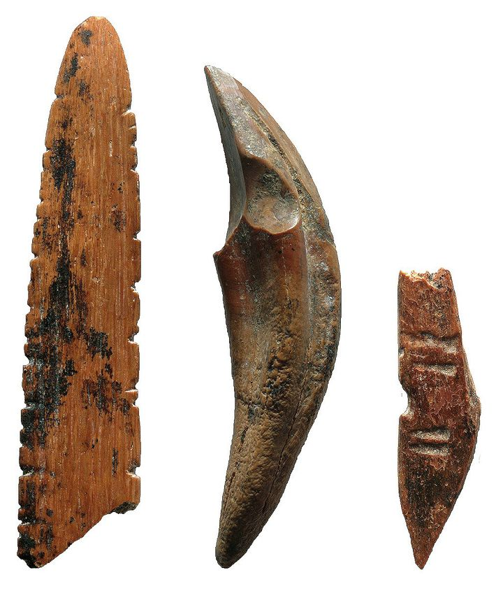 Tools made from bone and teeth were used to hunt small monkeys and squirrels, work skins ...