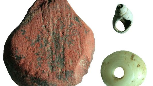 Ancient tools show how humans adapted to rainforests