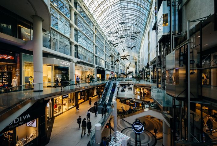Toronto's Eaton Centre is located in downtown Toronto.