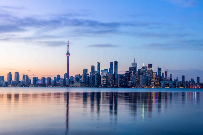 View of Toronto skyline overlooking Lake Ontario.