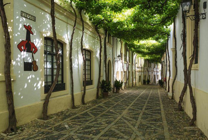 González Byass winery in Jerez de la Frontera, one third of Spain's Sherry Triangle.