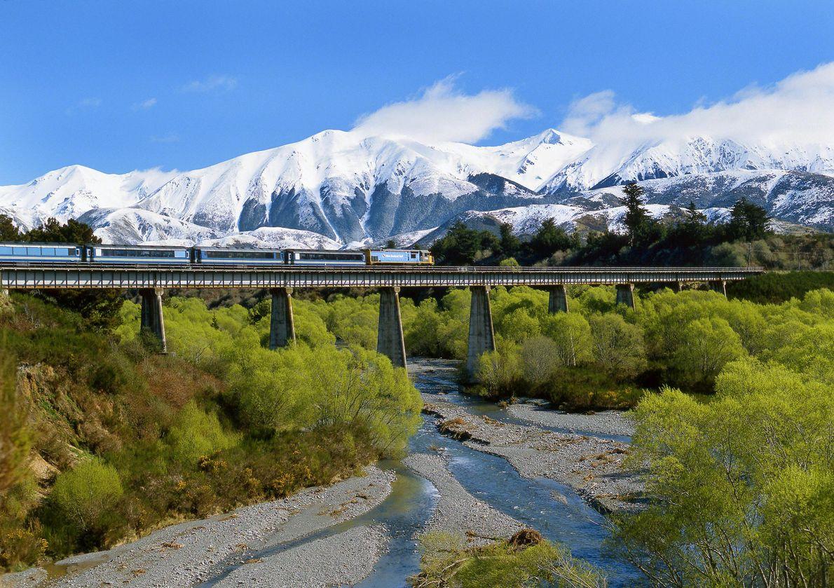 New Zealand's TranzAlpine runs between Christchurch and Greymouth, racing alongside the Waimakariri River and through the ...