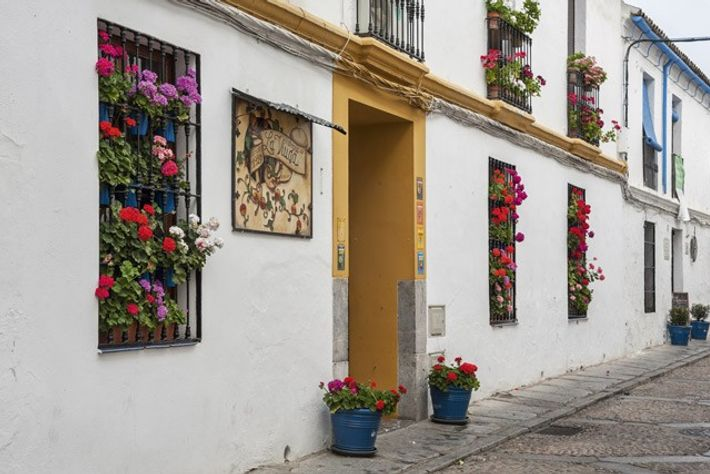 Flowered street at Cordoba, Andalusia