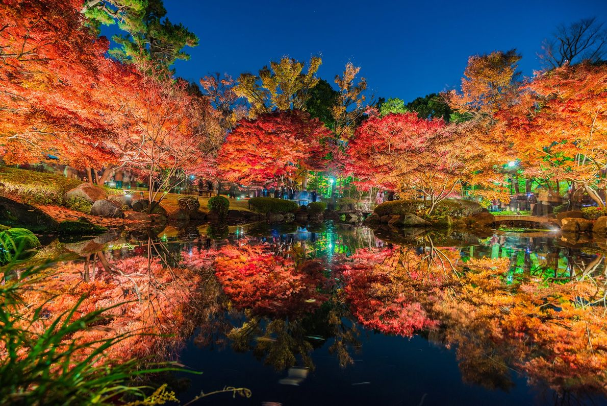 Autumn leaves reflect in a lake in Japan.