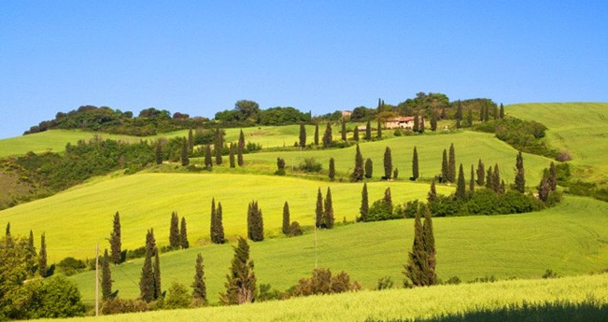 Tuscan hills.