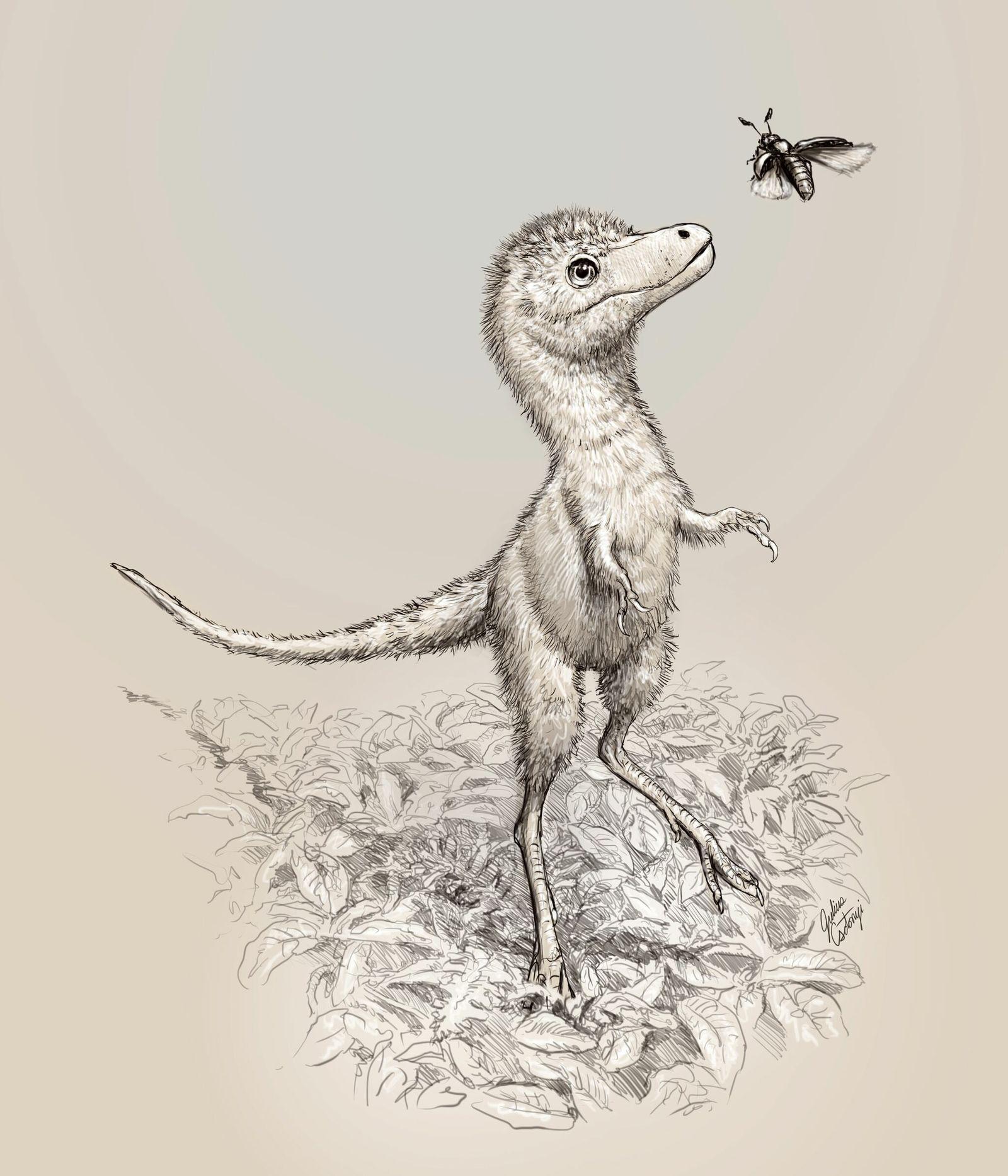 tyrannosaurus-juvie_01_202010161610.jpg?