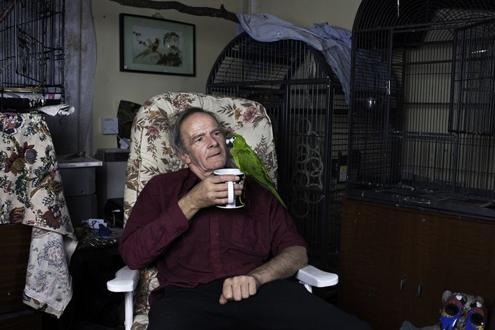 Michael relaxes in his living room with a cup of tea and a recently adopted red-shouldered ...