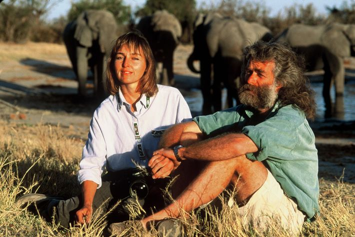"""""""In the 80s we would speak out about losing some beautiful male lions and nobody seemed ..."""