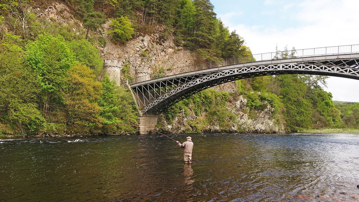 A fly fisherman on the River Spey, Scotland.