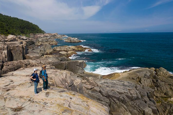 The longest stretch of the trail passes through Iwate Prefecture. Expect a dramatic prehistoric-looking coastline, with ...