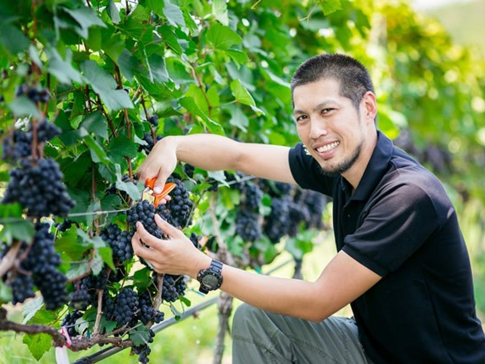 A Taste of Thailand: Monsoon Valley Wines