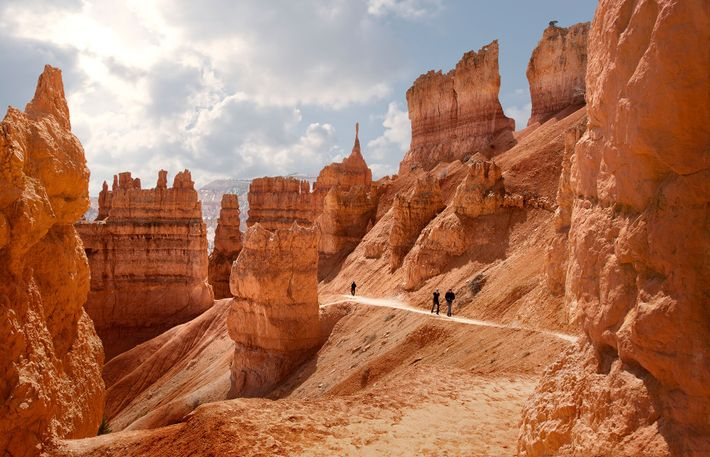 Hikers on the Navajo Loop Trail in Bryce Canyon National Park, famously home to 'hoodoos', a local ...