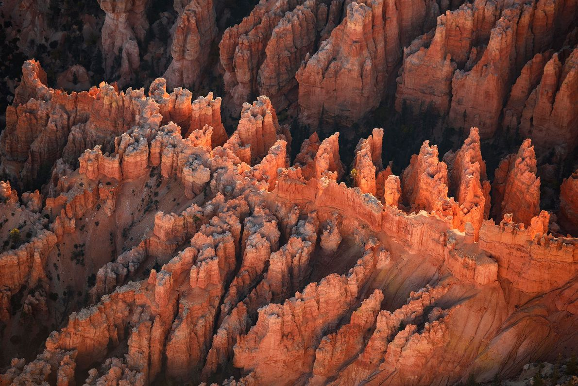 A view of Bryce Canyon National Park at sunrise.