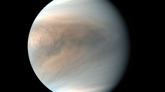 A false color image of Venus taken in ultraviolet light by Japan's Akatsuki spacecraft, revealing patterns ...