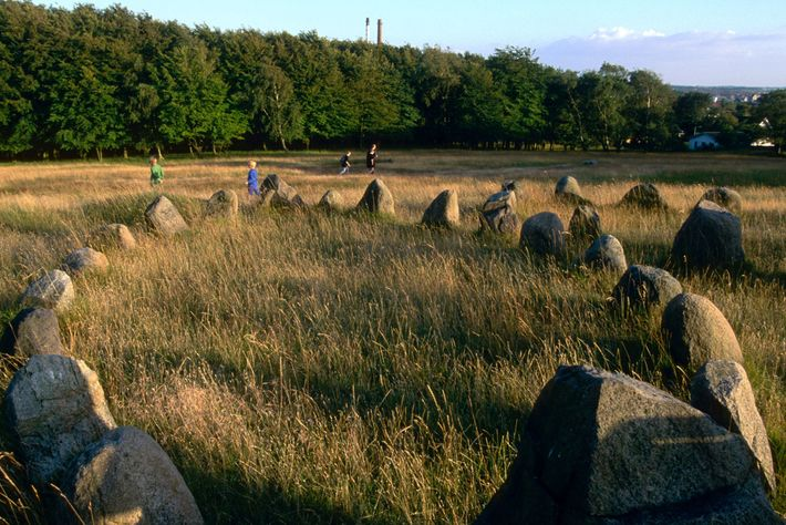 Remains from Viking burial grounds, such as this site of ship-shaped graves near Aalborg, Denmark, provide ...
