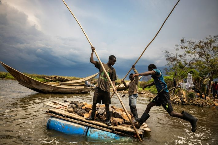 Virunga's lakes once hosted the world's largest hippo population, but poaching and habitat loss has decimated ...