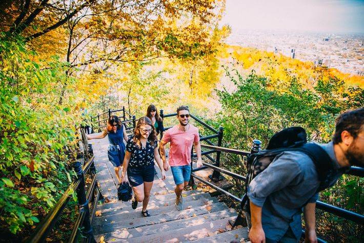 Mount Royal Park is open year-round and rewards those who make their way to the top ...