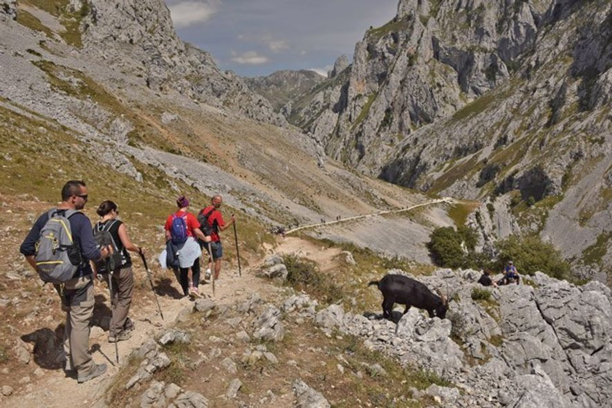 Hikers walking along the River Cares route between the towns of Poncebos and Cain in Picos ...