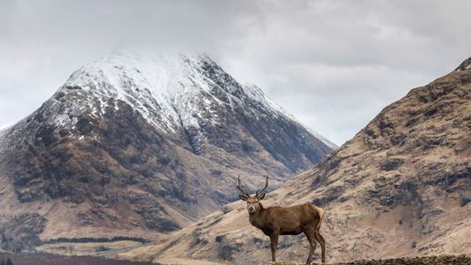 How to spend a weekend in Fort William and Glencoe