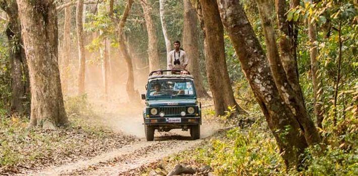 On the trail in Kaziranga National Park.