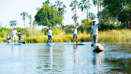 Top 6 alternative safari adventures