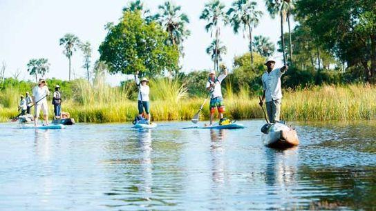 Standup paddleboarding on the Okovango Delta, Botswana.